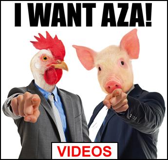 i want aza